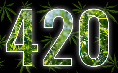 The Story Behind 420